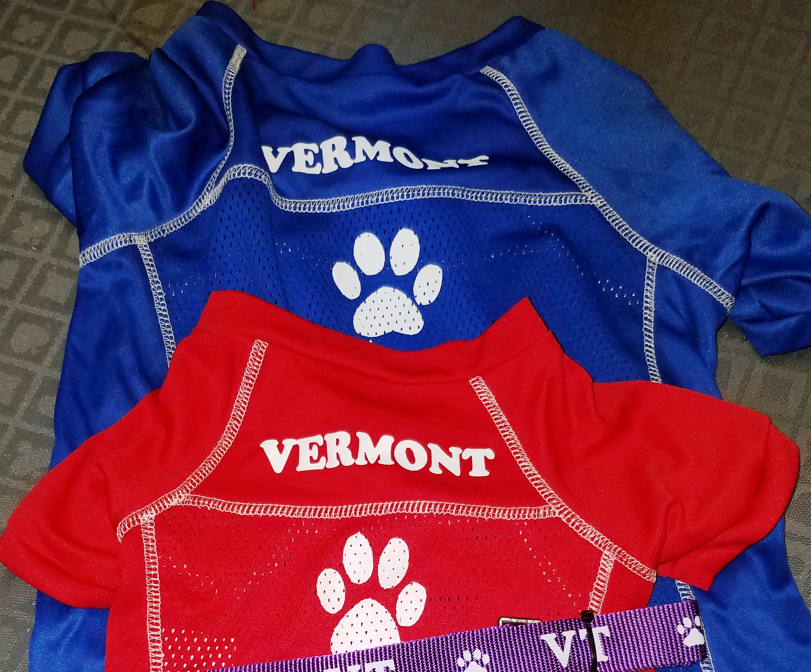 Copy of vt dog jersey