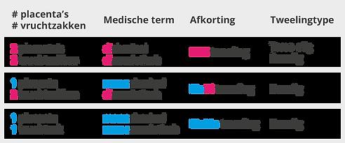 Tweelingschema NL.png