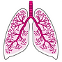 Lung_TAPS_witte_achtergrond.png
