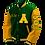 Thumbnail: Amelia County HS 2021 Letter Jacket