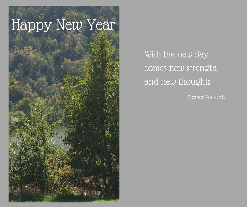 view of trees over lake with words Happy New Year