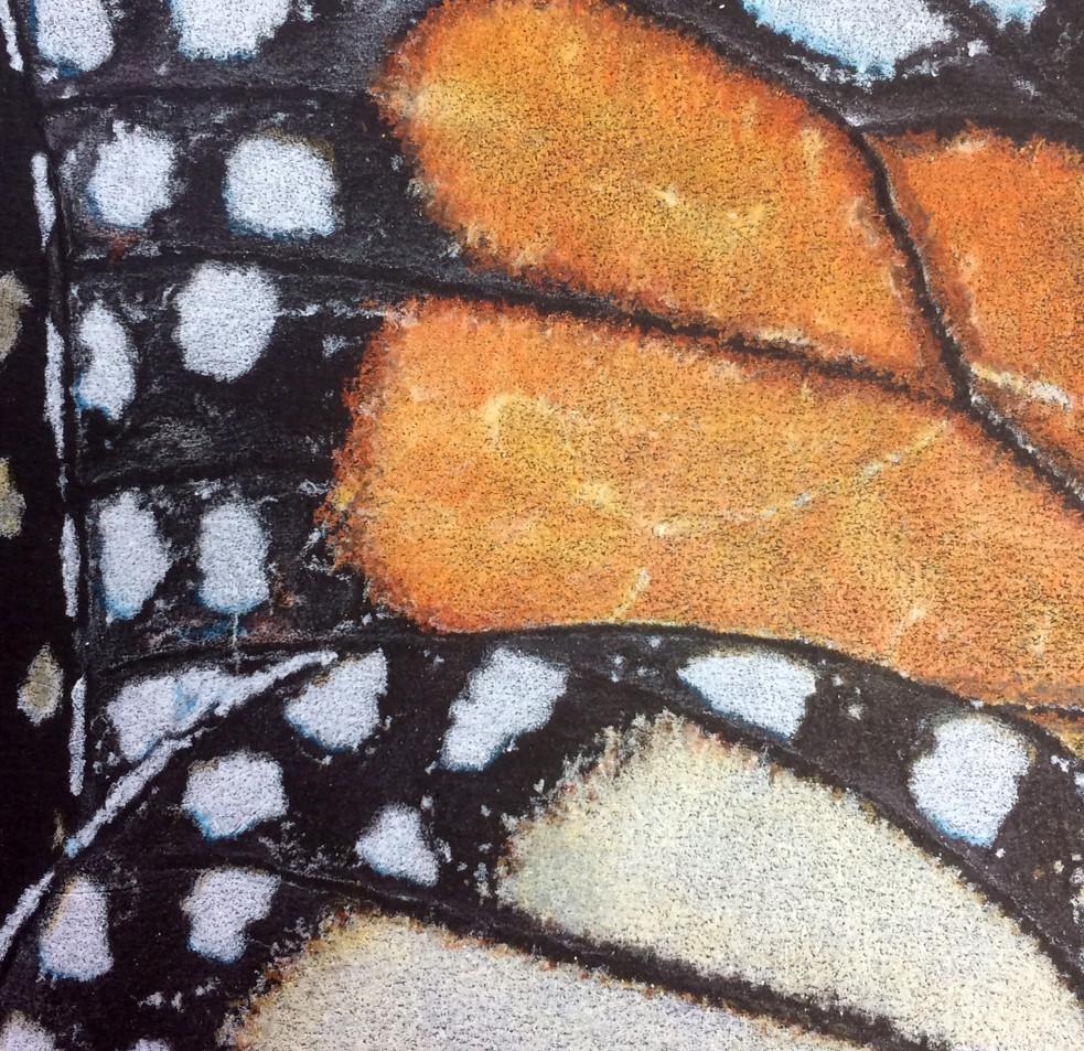 Pattern 1: Monarch