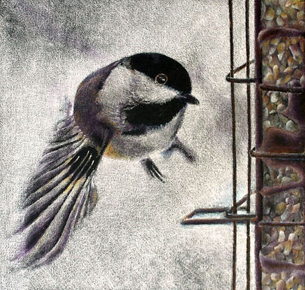 """Lunch On The Fly (colored pencil drawing, 6"""" x 6"""")"""