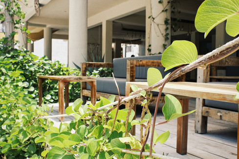 MALECóN 21, Beach Club & Restaurant at Costa Maya, Mahahual.