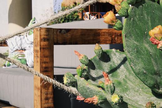 MALECóN 21, Beach Club & Restaurant at Costa Maya, Mahahual.  MALECóN 21, Restaurante & Club de Playa en Mahahual, Costa Maya, Mexico