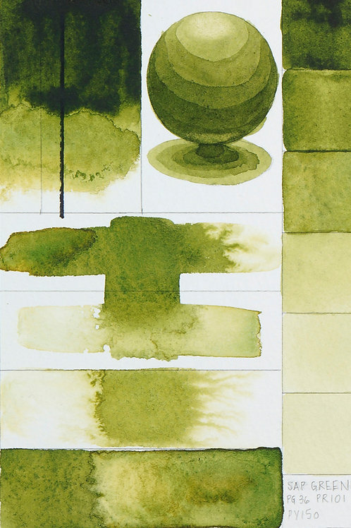 Golden QOR Watercolour - Sap green