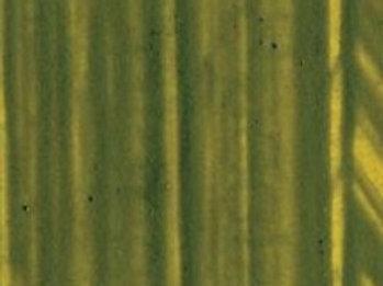 Williamsburg - Series 3 - Olive Green