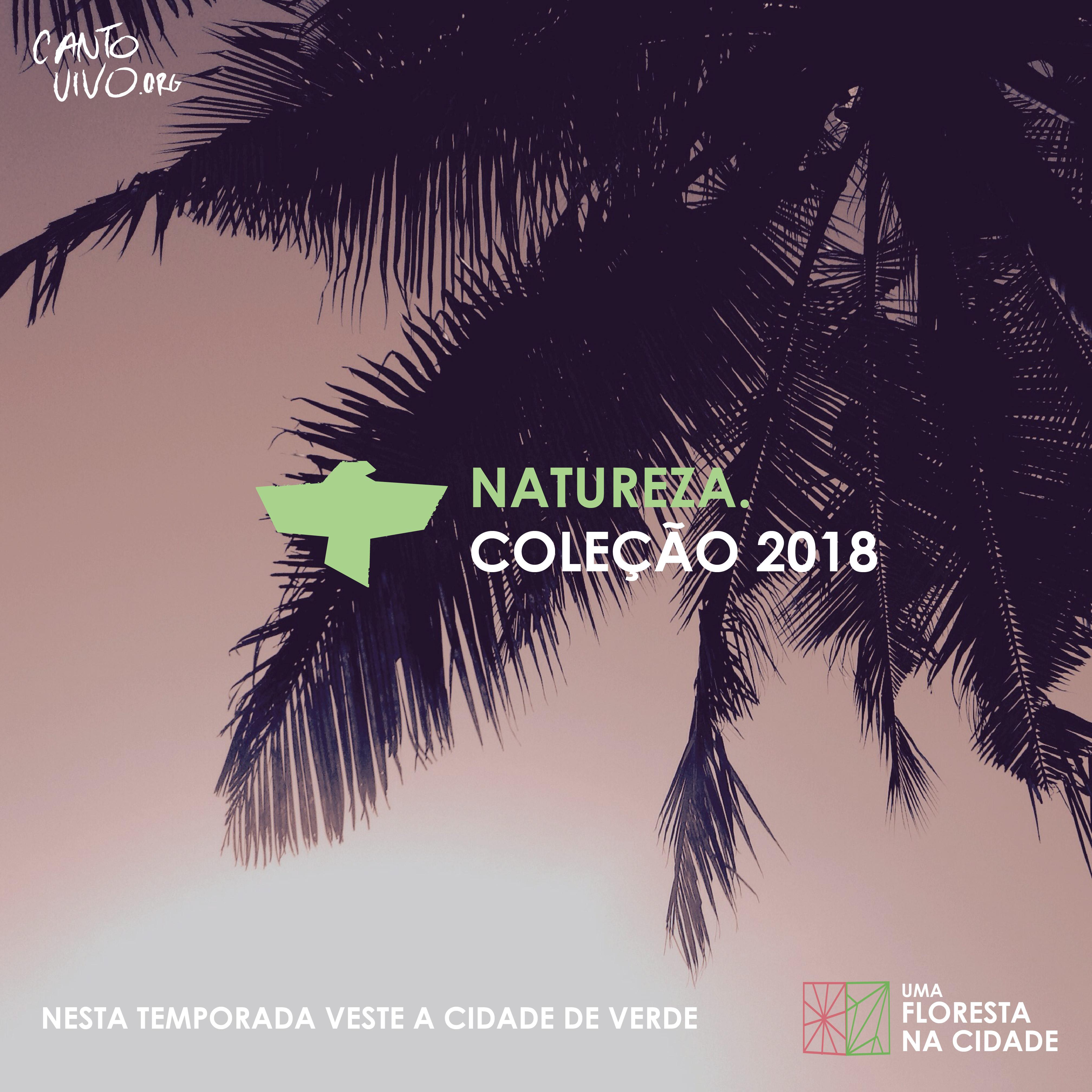 CANTO VIVO FLORESTA 2018-03