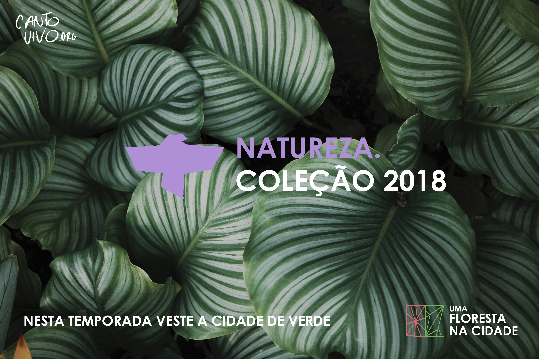 CANTO VIVO FLORESTA 2018-01