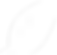 As folhas de planta ou arvore do brasil da revoluçao verde para a peservaçao do meio ambiente e o planeta pela ONG ambientalista do brasil canto vivo que refloresta a mata atlatica, a amazonia e as cidades verdes distribuindo sementes, fazendo aulas de desenvolvimento sustentavel e educaçao ambiental e reflorestando com a criaçao de mudas e plantando árvores