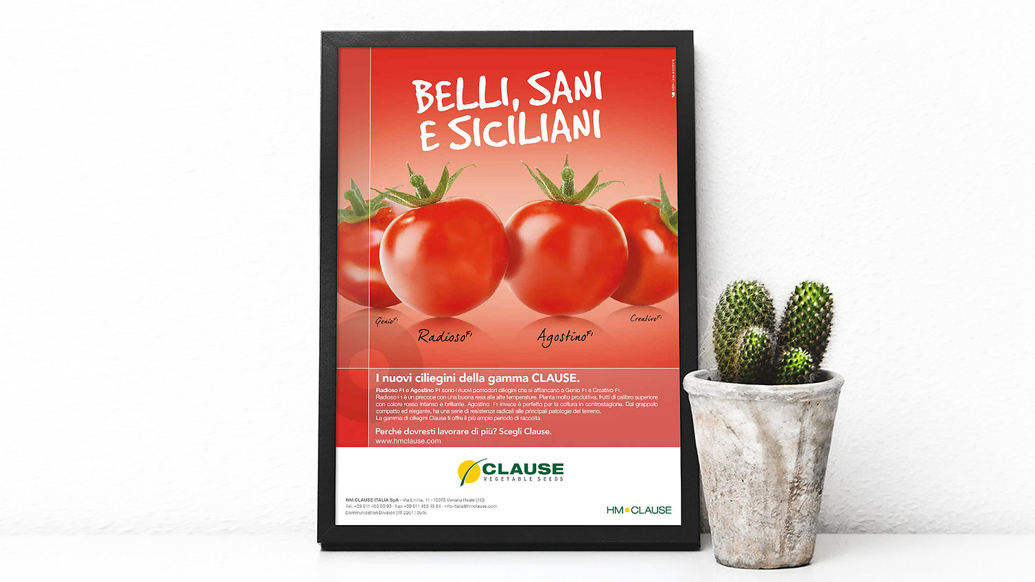 CLAUSE - Belli Sani Poster.jpg