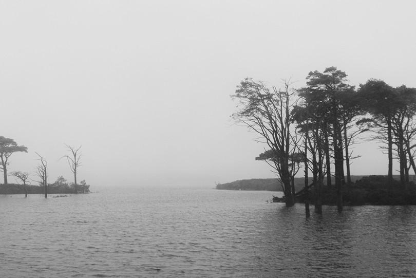 05 Islands of Life_David Payne.jpg