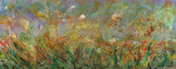 Corona de Tucson, 2002