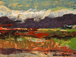 Sonoran Wind, 1994