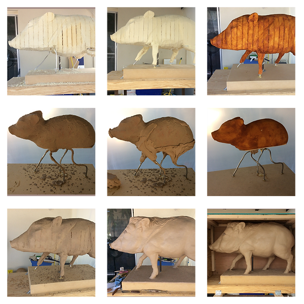 The-Javelina-Collage2.png