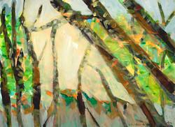 Mt. Lemmon Dawn (Angel Dawn), 2009