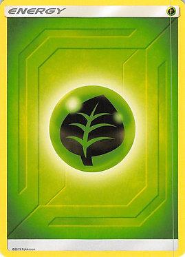 Grass Energy - 2019