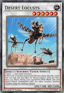 Desert Locusts - CHIM-EN082 - Common