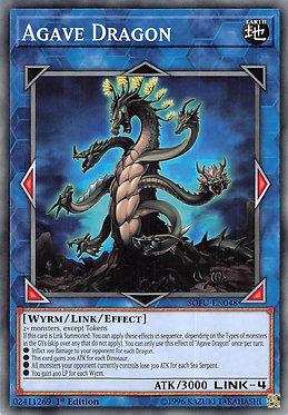 Agave Dragon - SOFU-EN048 - Common
