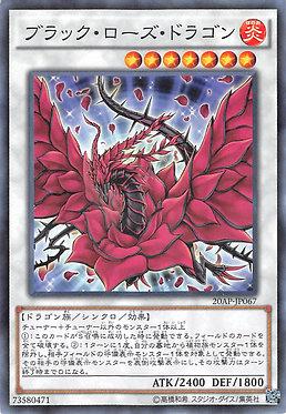 Black Rose Dragon - 20AP-JP067 - Normal Parallel Rare