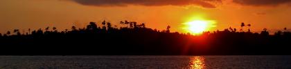 fishing school sunset