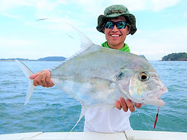 Diamond Trevally Singapore