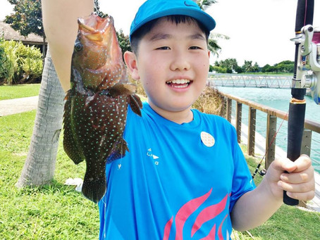 How Many Types of Fish Can You Catch at Lazarus Island?