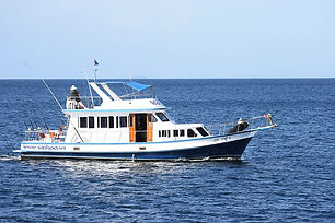 vessel--wahoo4-main.jpg