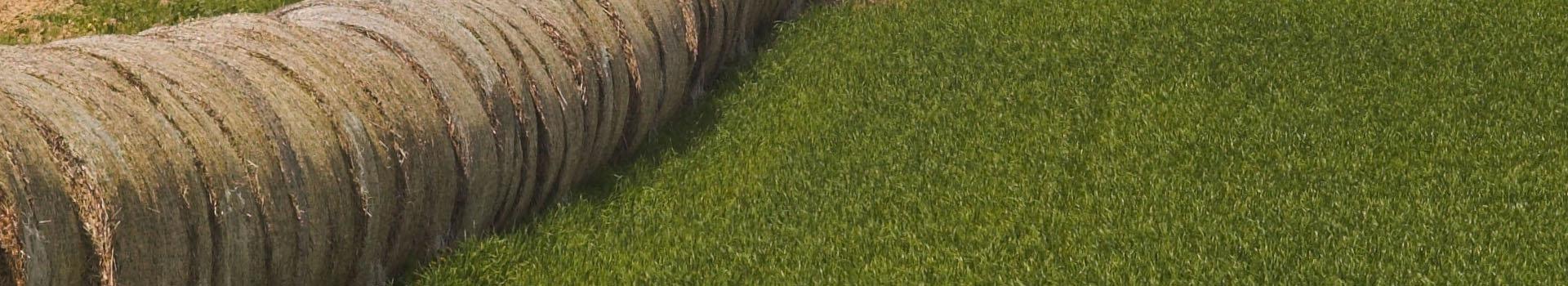 Biorefinery straw ethanol