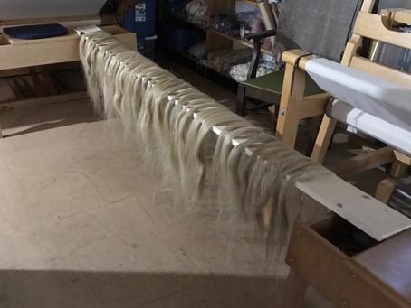 Scutched Flax fibre