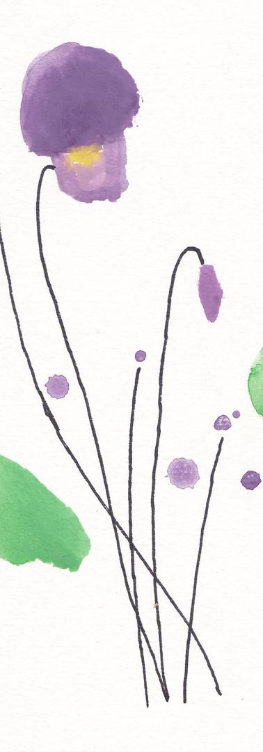 violette_la_sève.jpg