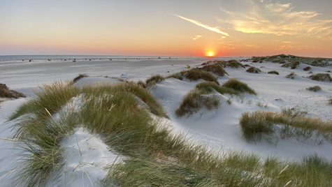 nordsee . germany . 2020