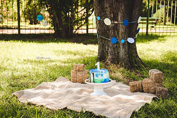 Cake-smash-exteriores-primer-cumple-bebe-ndfotografia-2.jpg