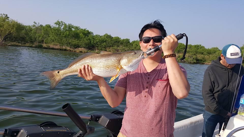 2018fish32