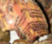 Howardite Rattlesnake Jasper for sale