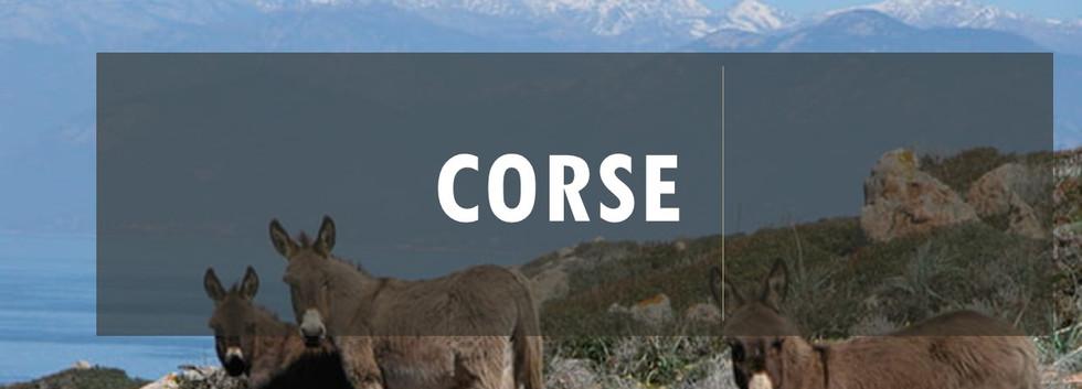 Projet Corse