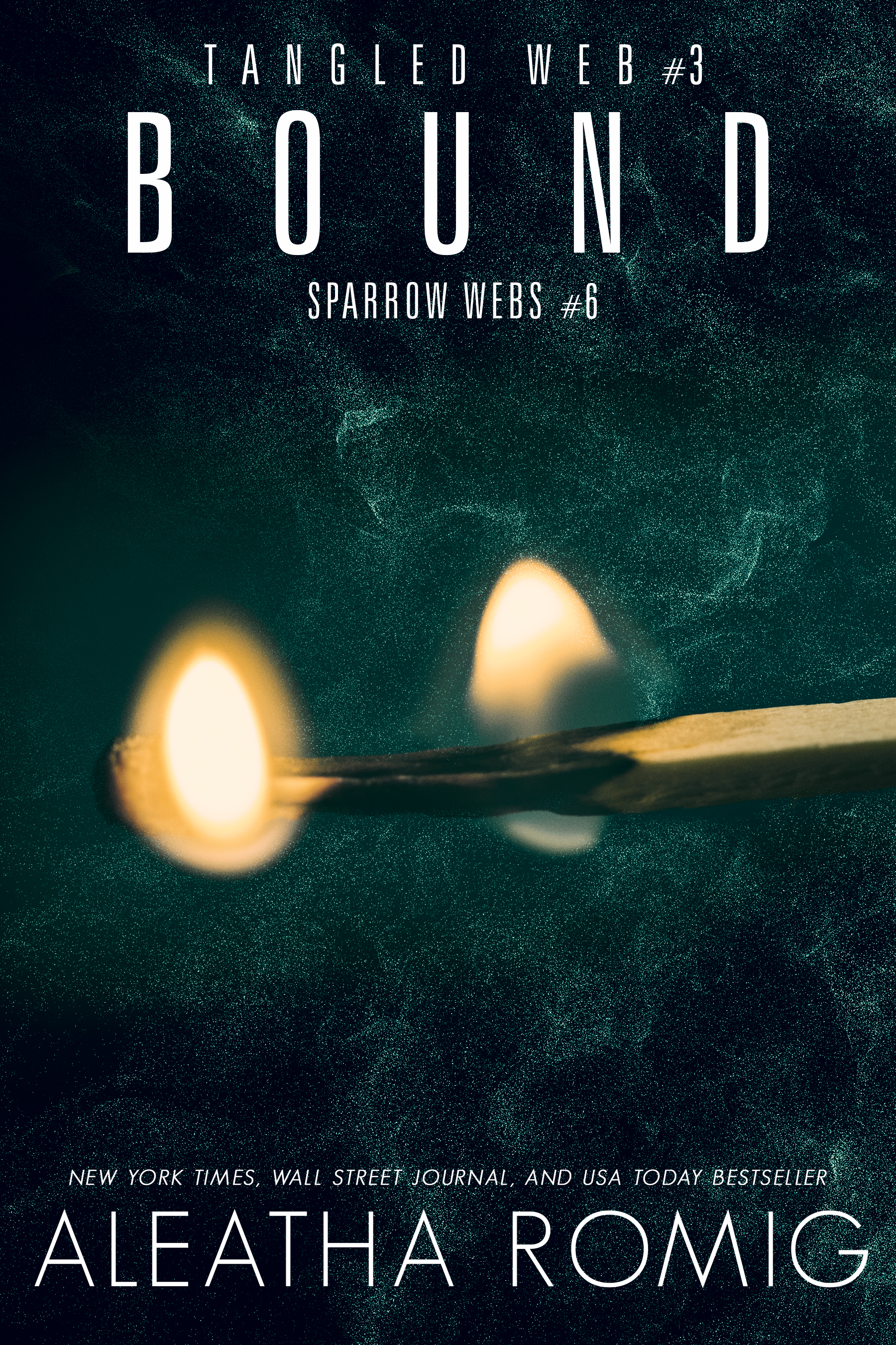 BK3 Bound E-Book Cover