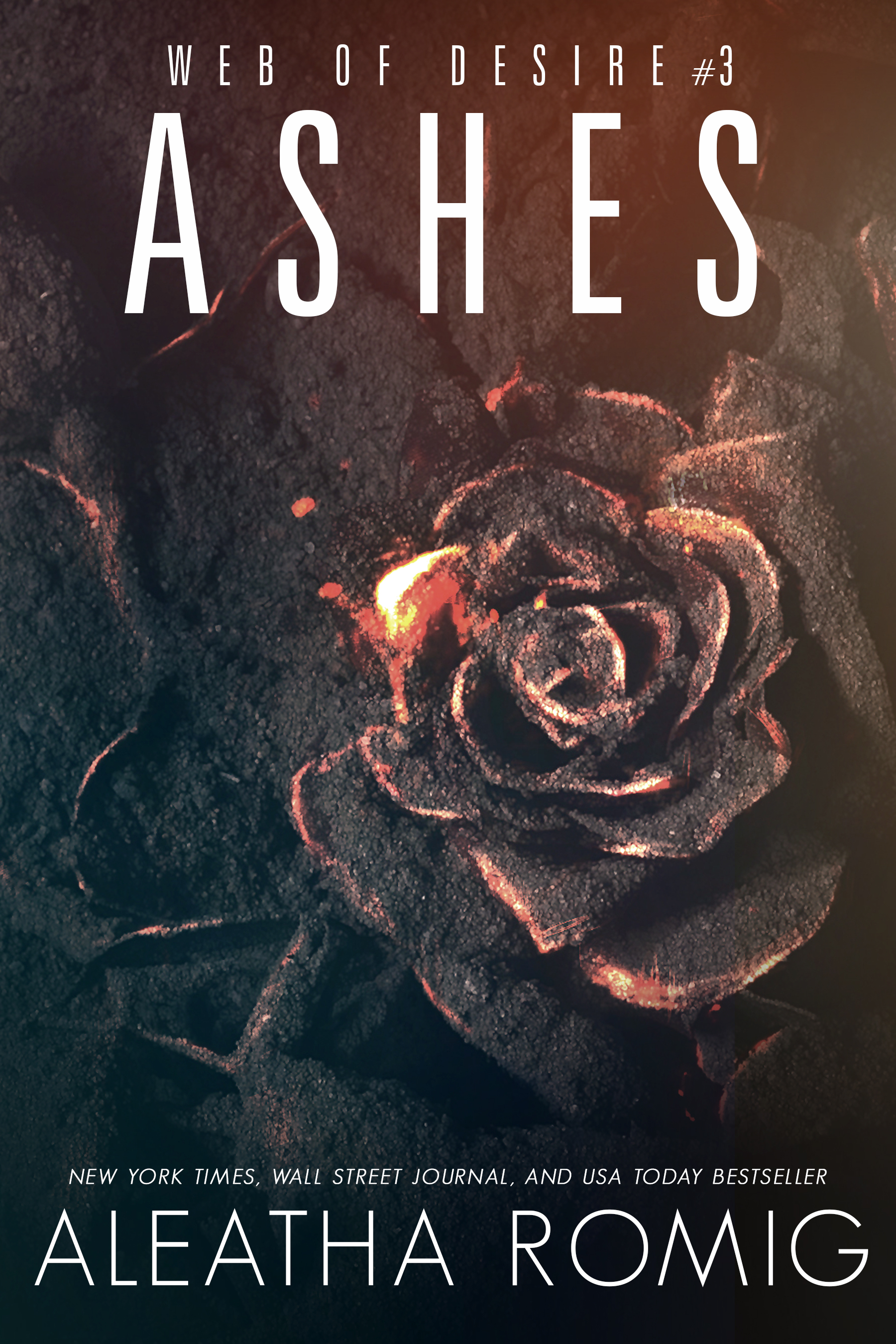 BK3 Ashes E-Book Cover