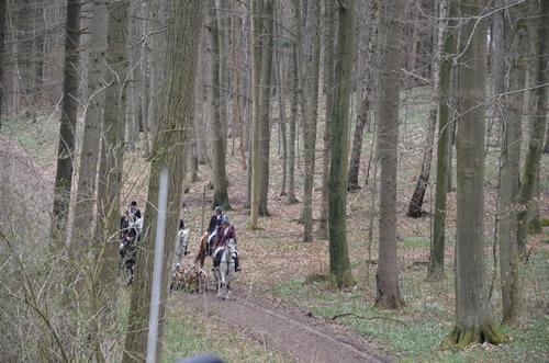 Burg-Schlitz-2013-1090