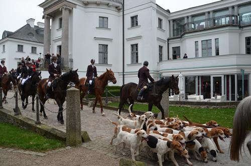 Burg-Schlitz-2013-1033