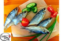 рыба вяленая Астрахань