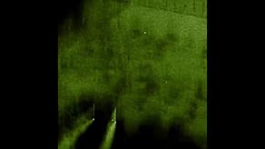 WARTORTOISE-1080.mp4