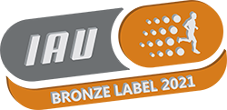 Transparent bronze 2021 (для сайта).png