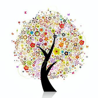 Bild Baum.jpg