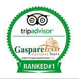 Gasparetour trip advisor n1.jpg