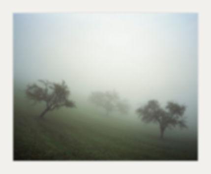 brouillard-III-fine-art-kunstbild.jpg