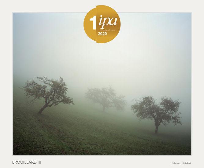 1st Place Analog / Film/Landscape   BROUILLARD III
