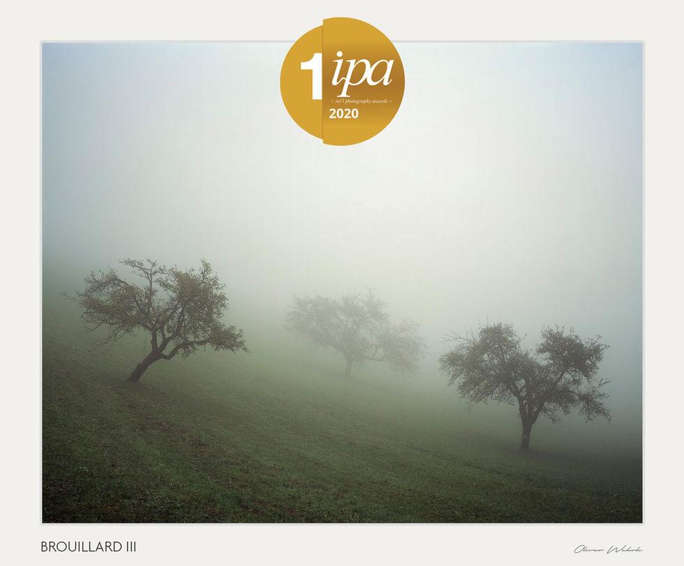 1st Place Analog / Film/Landscape | BROUILLARD III