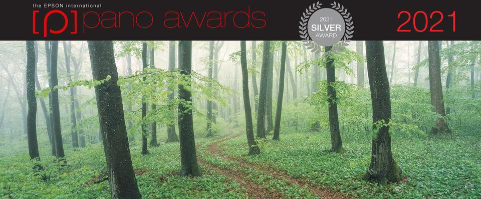 WEGE-DES-WALDES-2-Silver-Award.jpg