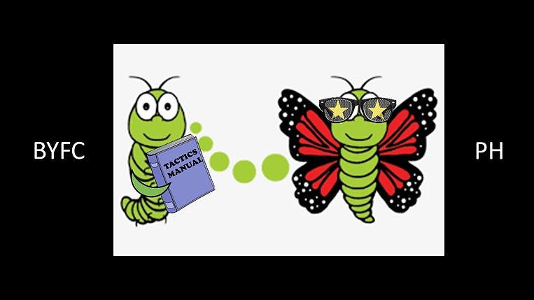 caterpillar to butterfly.jpg